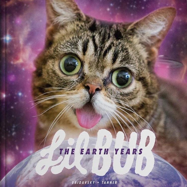 Lil BUB: The Earth Years